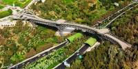 Nature Bridge  IN Tehran